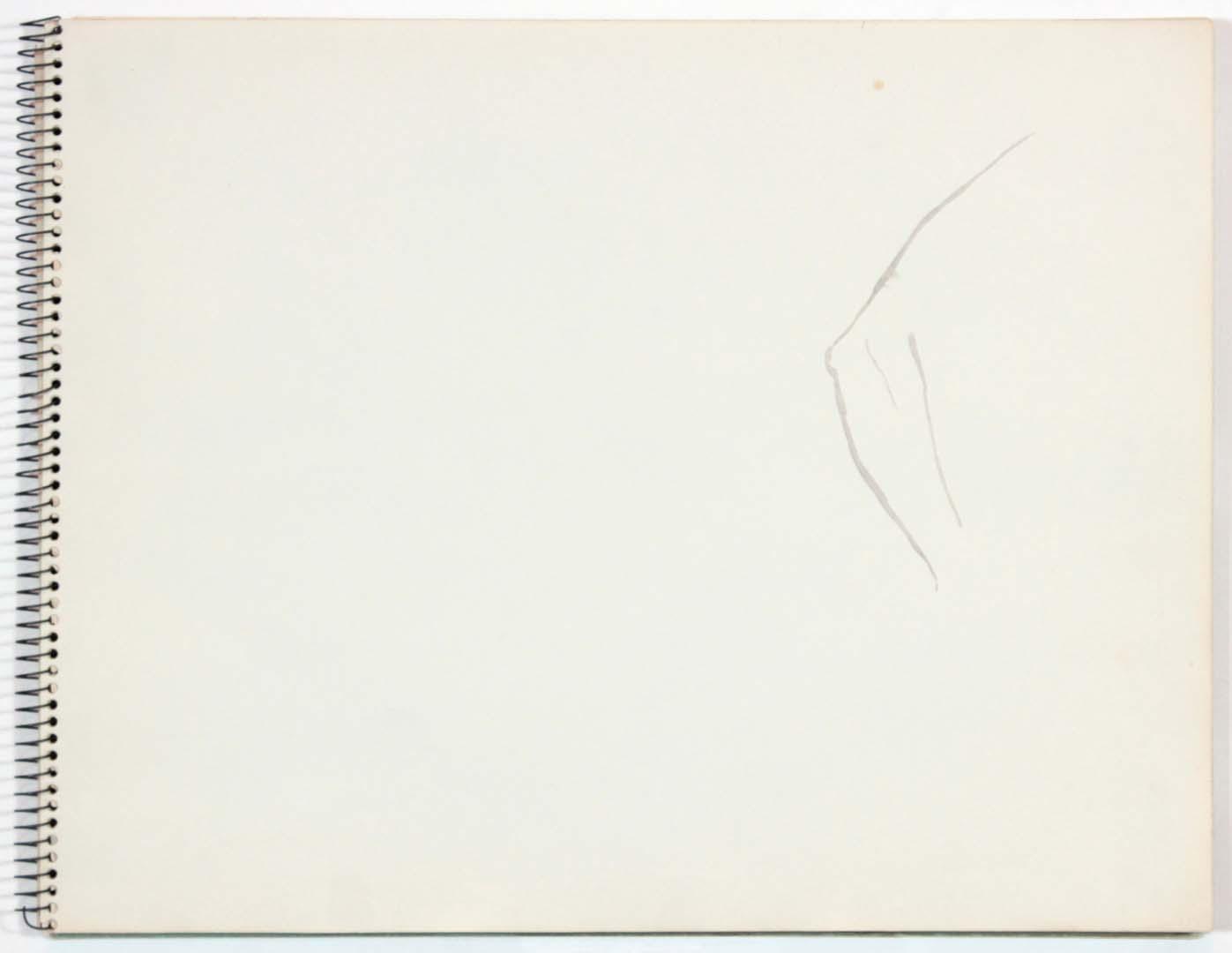 "1961 NT (SB #22) Wash on Paper 14"" x 11"""