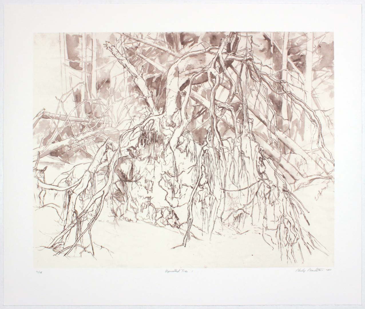 "2011 Uprooted Tree #1 Lithograph on Paper 20.625"" x 24.625"""