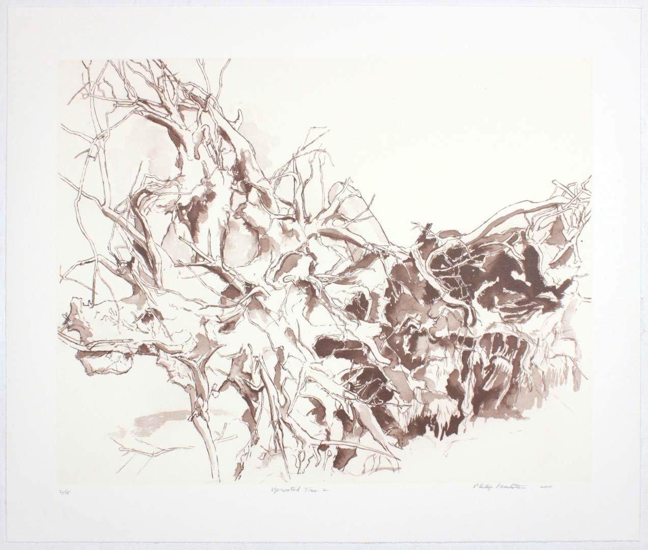 "2011 Uprooted Tree #2 Lithograph on Paper 20.625"" x 24.625"""