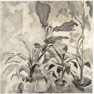 1951 Plants Oil on Canvas 28 x 28