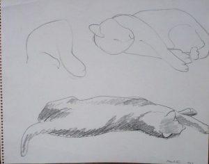 1963 Cats Pencil 11 x 14