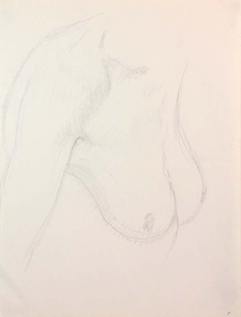 Female Nude Pencil 12 x 9
