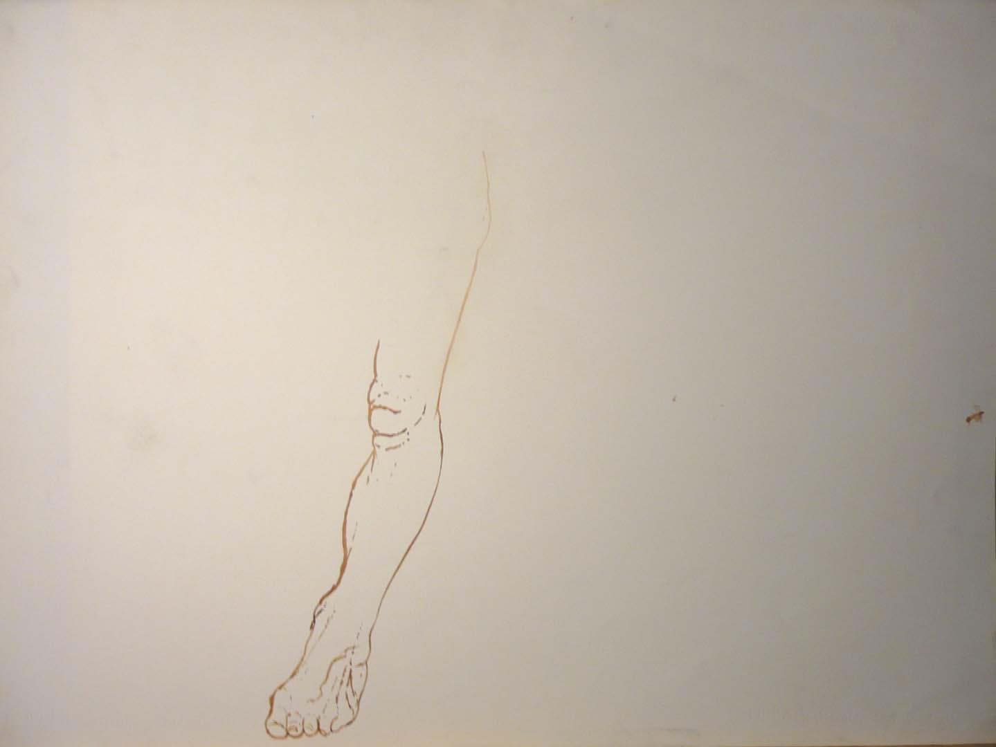 Leg Sepia 22 x 29.875