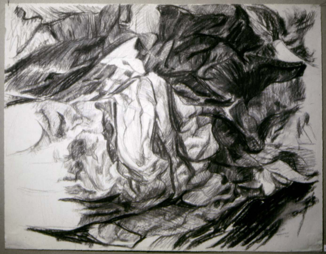 1955 Rock Study Charcoal on Paper Dimensions Unknown