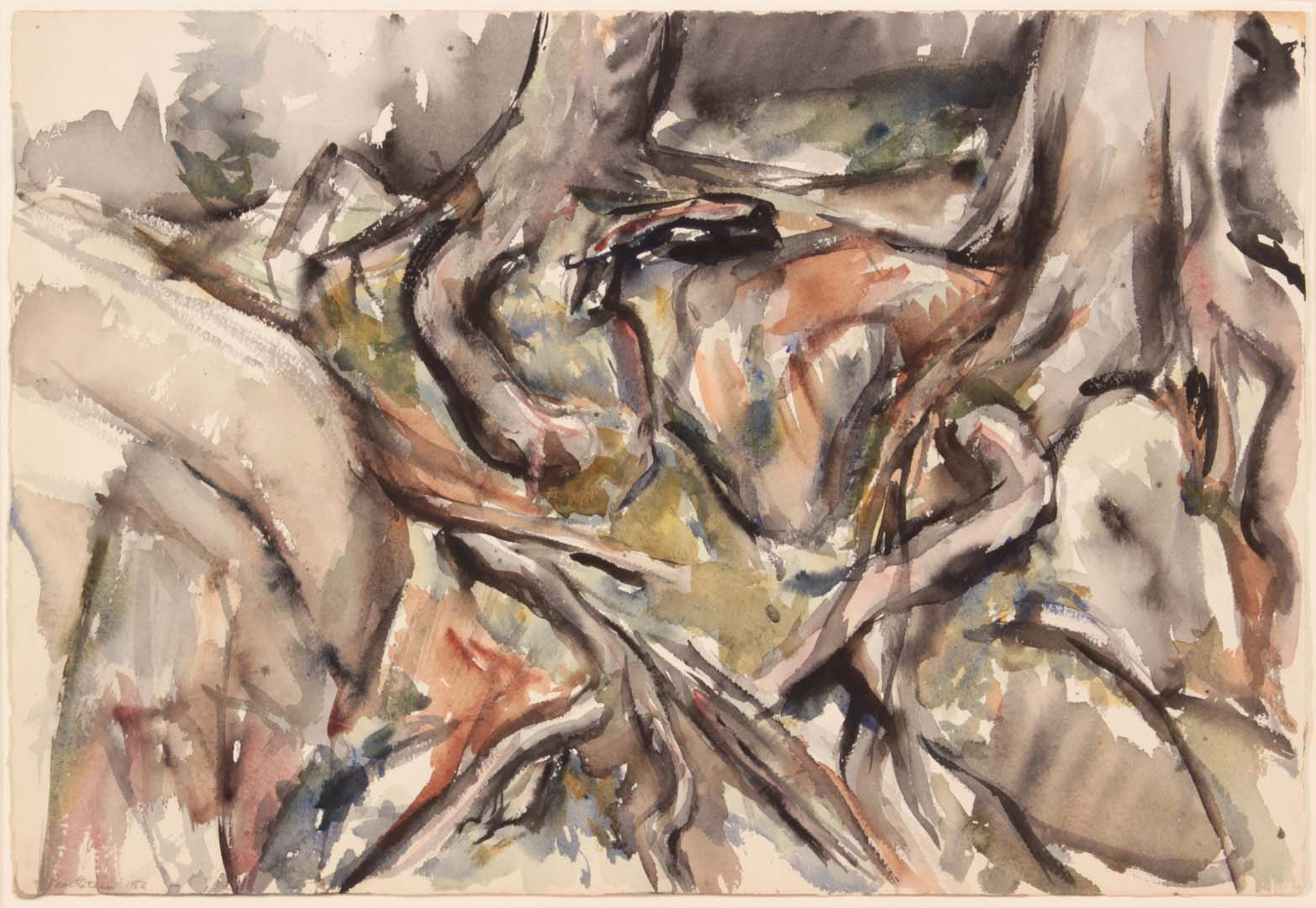 1956 Deer Isle Tree Roots Watercolor on Paper 15 x 22