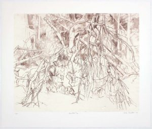 2011 Uprooted Tree #1 Lithograph on Paper 20.625 x 24.625