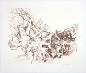 2011 Uprooted Tree #2 Lithograph on Paper 20.625 x 24.625