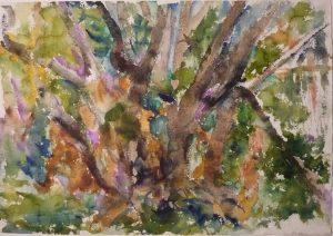 Deer Isle #3 Watercolor on Paper